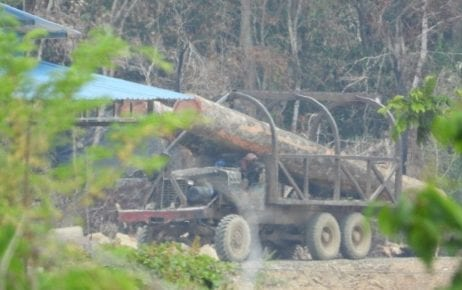 A truck is seen transporting logs in the Prey Lang Forest in Kratie province in early 2019. (Ouch Leng)