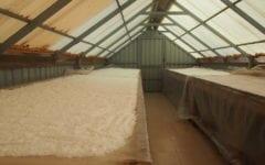 Unpredictable Seasons Put Cambodia's Salt on Shaky Ground