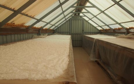 Salt lays out to dry in a greenhouse at Thaung Trading Company's processing laboratory in Kampot province in September 2019. (Danielle Keeton-Olsen/VOD)