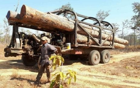 A man stands next to a truck that was found transporting timber from Prey Preah Roka National Park in Preah Vihear province in January 2019 (Heng Sros)
