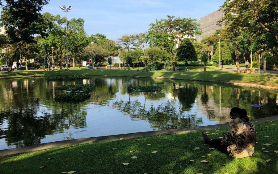 A CNRP member sits near a pond in Bangkok's Santiphap Park on November 7, 2019 (Matt Surrusco/VOD)