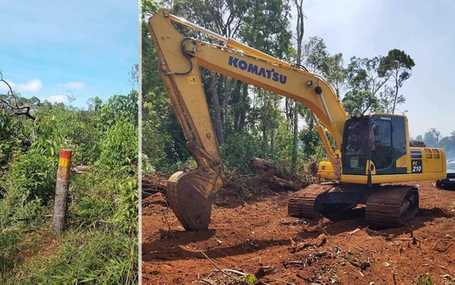 A cut tree and crane used to clear trees in a state forest in Mondulkiri province's O'Raing district in 2020 (Supplied)