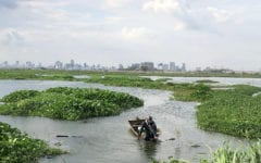 Phnom Penh Lakes, Livelihoods Threatened by Urban Development: Report