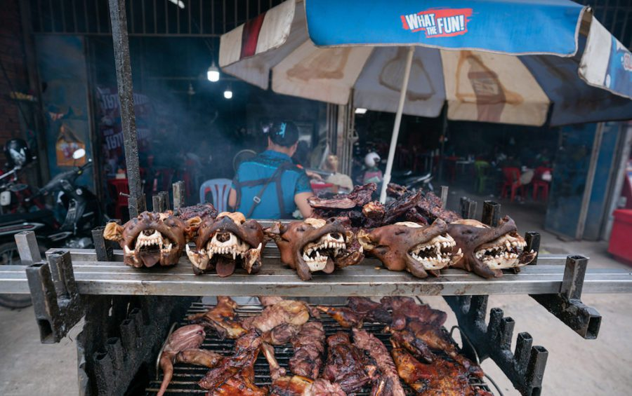 Dog heads and meat for sale at a roadside restaurant in Phnom Penh. (Andy Ball/VOD)