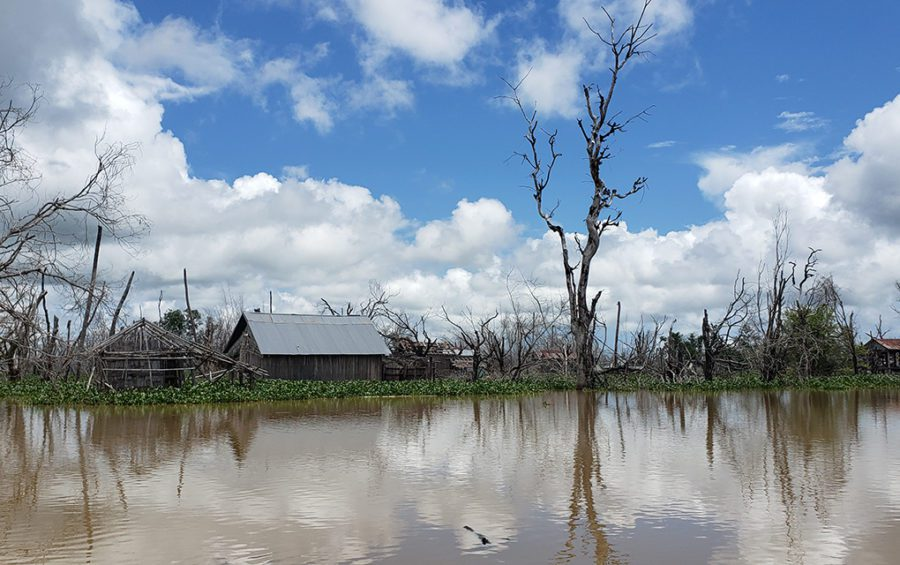 Empty buildings and dying trees are what remains of the original Kbal Romeas, an indigenous village within the Lower Sesan II hydropower dam reservoir in Stung Treng province. (Danielle Keeton-Olsen/VOD)