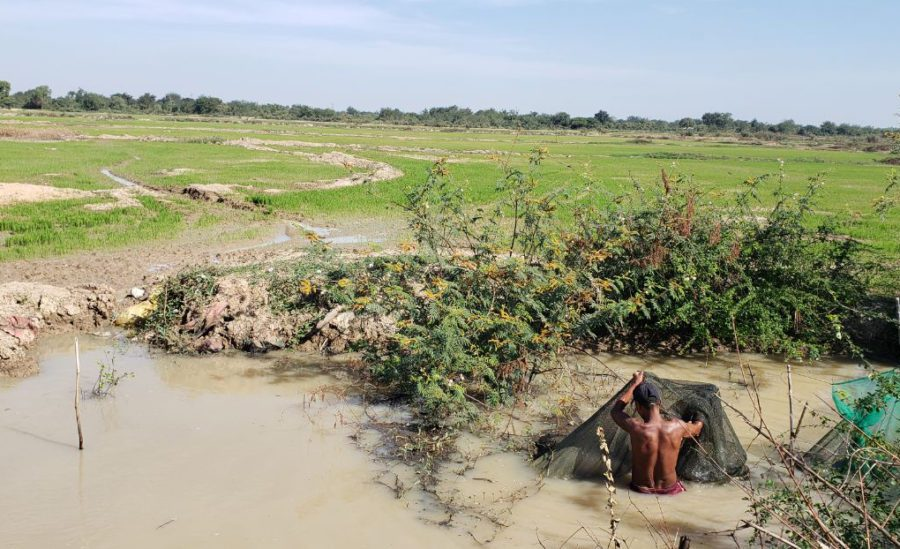 Fisherman Ngoy Kim, 46, gathers his nets in a wetland near the new airport development in Kandal province's Kandal Stung district on January 8, 2021. (Danielle Keeton-Olsen/VOD)