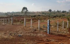 Stop Issuing Land Titles in Protected Areas, Provincial Governors Told