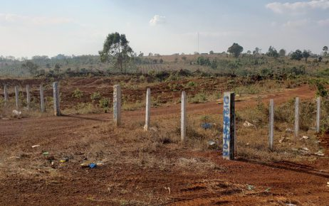 Fence posts inscribed with phone numbers partition land in Mondulkiri's O'Reang district on February 12, 2021. (Danielle Keeton-Olsen/VOD)