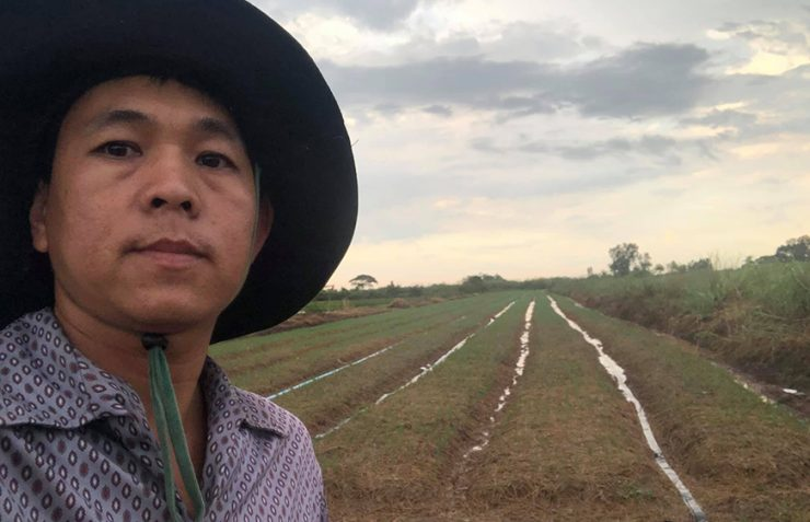 Tai Song, a vegetable farmer in Kandal province's Sa'ang district, Toek Vil commune, said his vegetables were rotting in their fields because of the lockdown with a photo posted to his Facebook page.