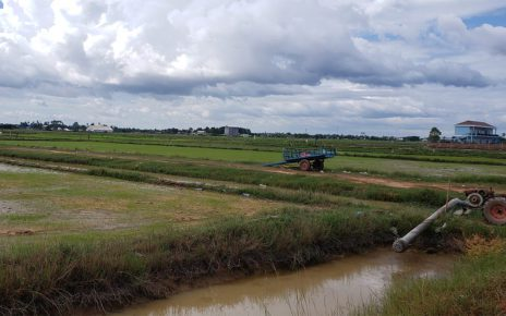 Rice fields and irrigation canals outside Siem Reap city on October 31, 2020. (Danielle Keeton-Olsen/VOD)