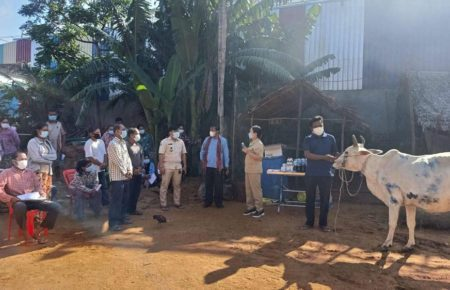 Authorities vaccinate cows for lumpy skin disease in Kampong Chhnang province's Svay Rompear commune, in a photo posted to the Agriculture Ministry's Facebook page on August 26, 2021.