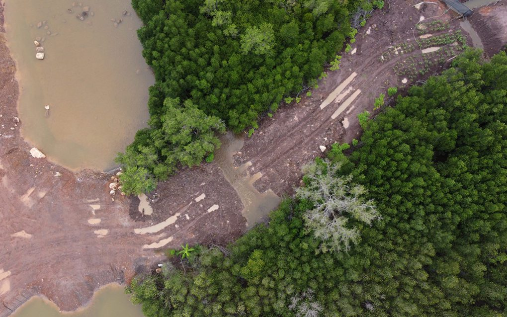 Truck tracks and sand cut through a strip of mangrove forest near the IGB (Cambodia) sandfilling site, in Kampot's Toek Chhou district on August 26, 2021. (Danielle Keeton-Olsen/VOD)