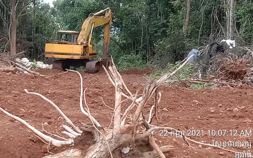 Indigenous patrollers photographed deforestation in Mondulkiri's Keo Seima Wildlife Sanctuary on September 22, 2021. (Supplied)